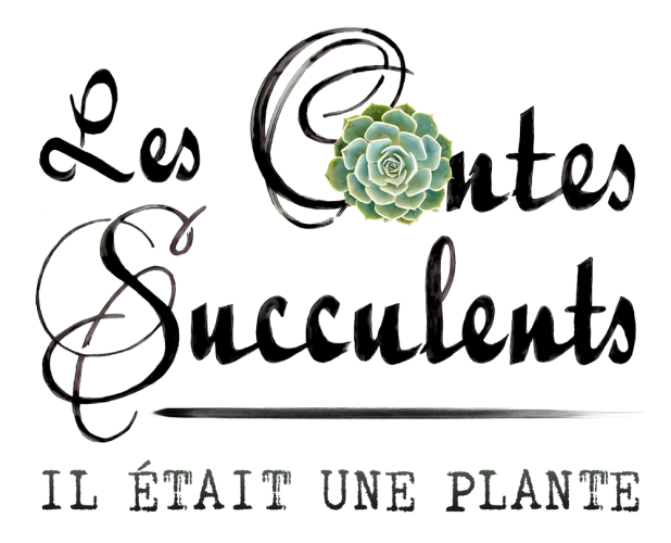 lescontessucculents.com